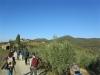 chianti-13-11-2011-cai-15