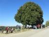 chianti-13-11-2011-cai-6