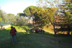 Chianti Valdarnese e Senese. Novembre '15