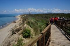 Cicloescursione alla riserva di San Rossore