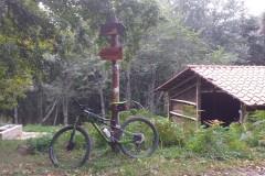 FORESTE CASENTINESI con CAI Siena