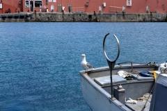 Lazio. Isole Pontine. Maggio'19