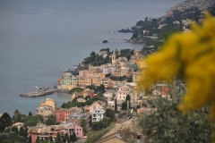 Liguria. Recco-Pieve Ligure. Febbraio '17