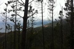 Liguria. Riomaggiore-Portovenere.  Febbraio '15