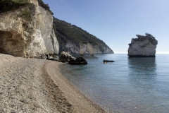 Gargano_2016_111_(FILEminimizer)