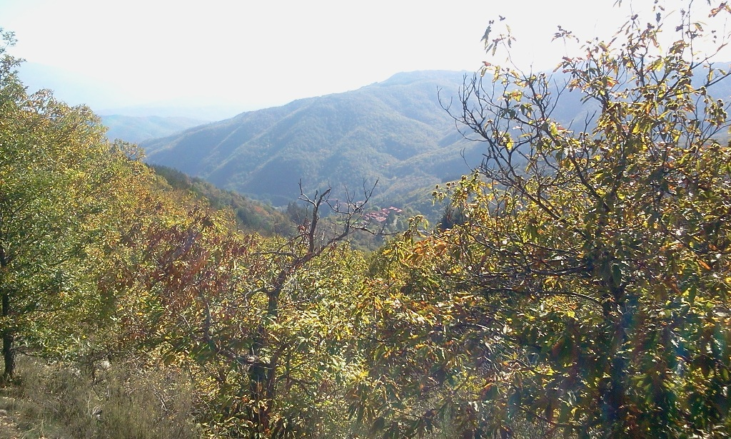 2012-10-23-12-02-06