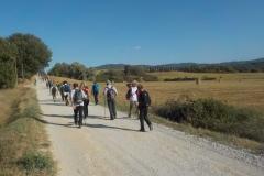 Seminotturna. Colle Val d'Elsa-Monteriggioni. Settembre '17