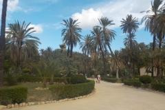 Sicilia.Palermo-isola di Ustica.(2) ottobre\\\'16