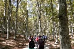 Toscana. Anello del rifugio Amiatino. Luglio '17