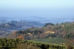 Toscana. Val d'Elsa. Gennaio '18