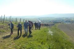 Toscana. Anello di Montalcino. Aprile '17