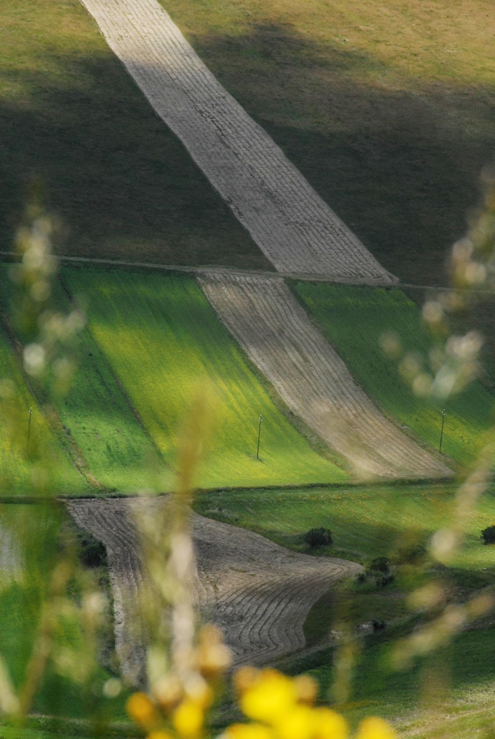 2014-la-fiorita-2a-773-fileminimizer