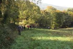Val di Cecina: Rocca Sillana- San Dalmazio . Novembre '14