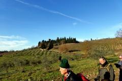 Val di Pesa. Chianti Fiorentino. Gennaio '16