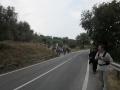 francigena-intersez-25-9-11-027