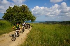 X RADUNO NAZIONALE di ciclo escursionismo 24 aprile