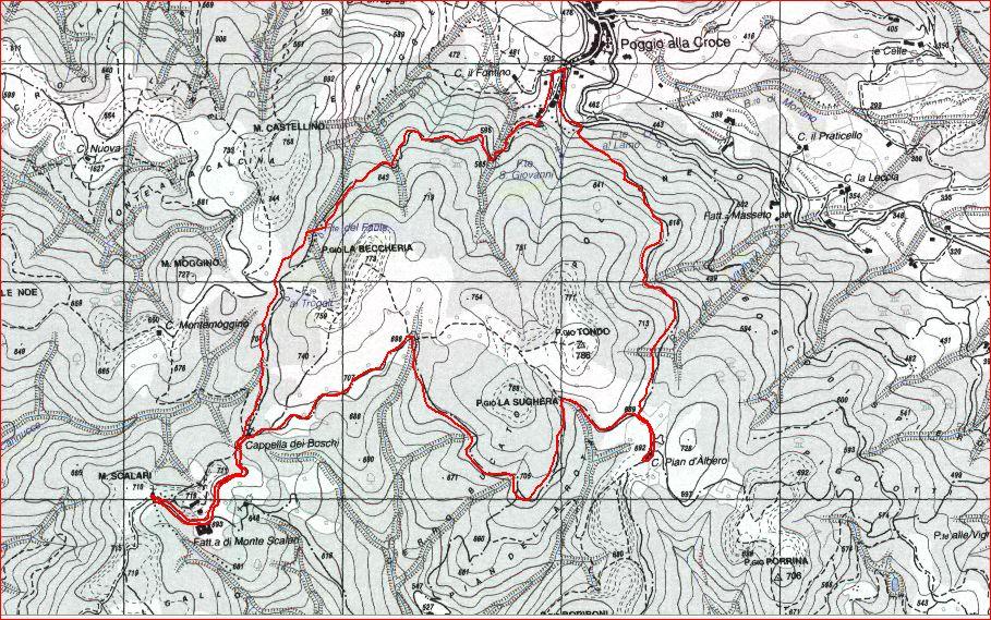 Poggio alla Croce Monte Scalari Pian D'Albero