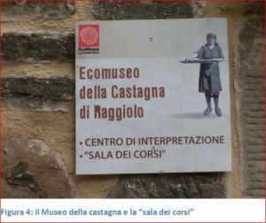 Figura 4 Museo castagna
