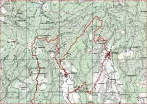 Radda Castelvecchi Volpaia 2