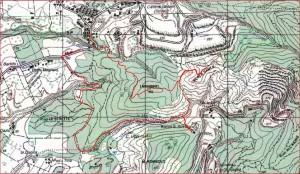 Sentiero del Corbezzolo