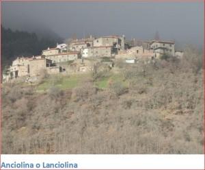 Anciolina1