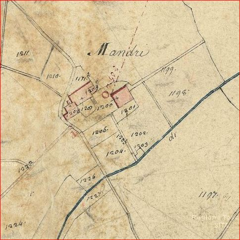Mandri1