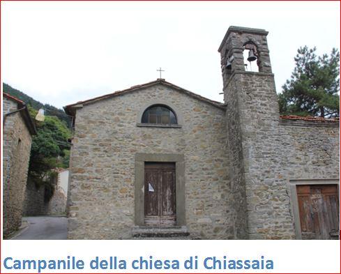 Chiassaia