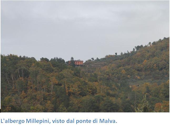 paesaggio-millepini